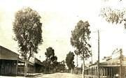 Looking South From Poverty Street, Tarnagulla, c 1920