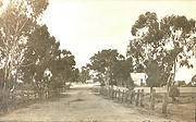 Looking East along Wayman Street, Tarnagulla c 1920